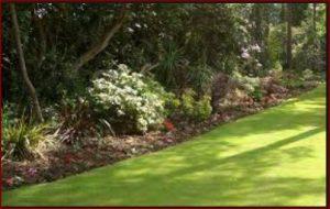landscape gardener in sydney australia