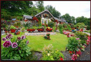 oatlands lawn mowing