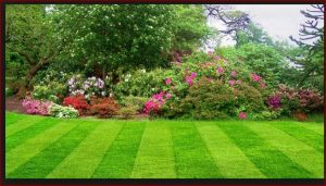 lawn mowing service rates